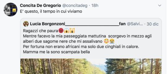 salvini de gregorio borgonzoni
