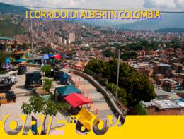 """I """"corridoi di alberi"""" in Colombia"""