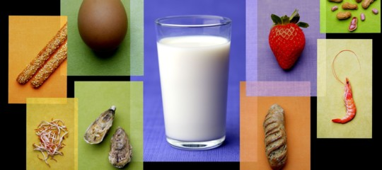 numeri intolleranze allergie alimentari