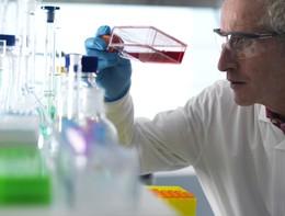"""Scoperta una """"super cellula"""" nella lotta contro i tumori"""
