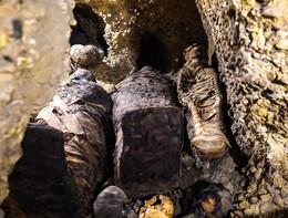 Riprodotta la voce di una mummia egizia di tremila anni fa