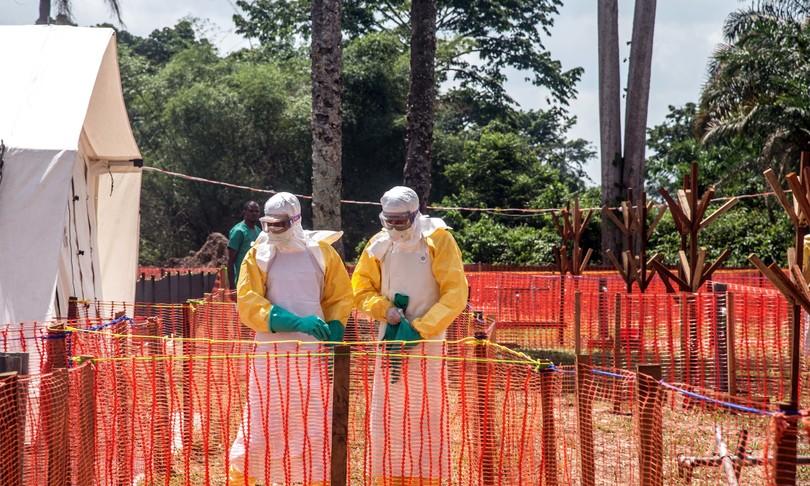 coronavirus libri spillover pandemie vendite amazonquammen