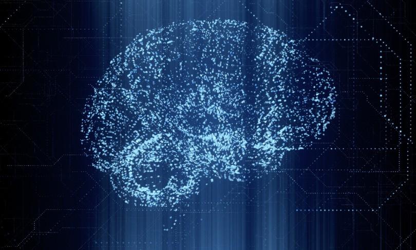 """Scoperte """"cellule del tempo"""" all'interno del cervello umano"""