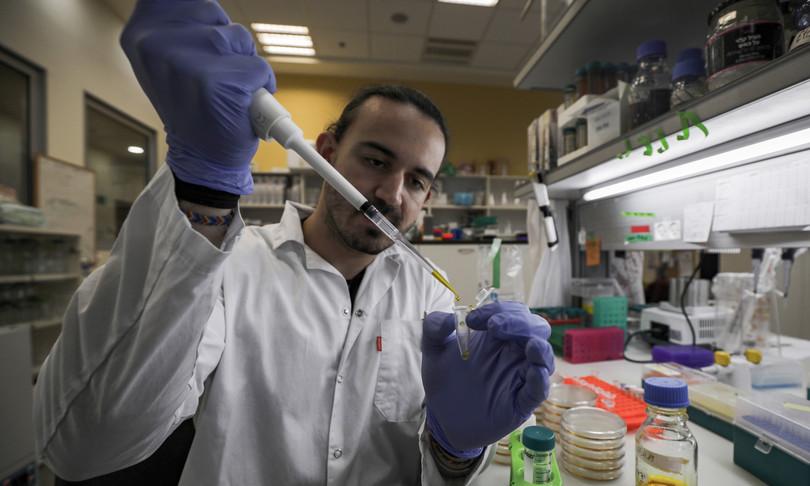 ricerca vaccino coronavirus