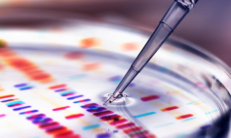 Assemblata la prima sequenza di DNA umano completa