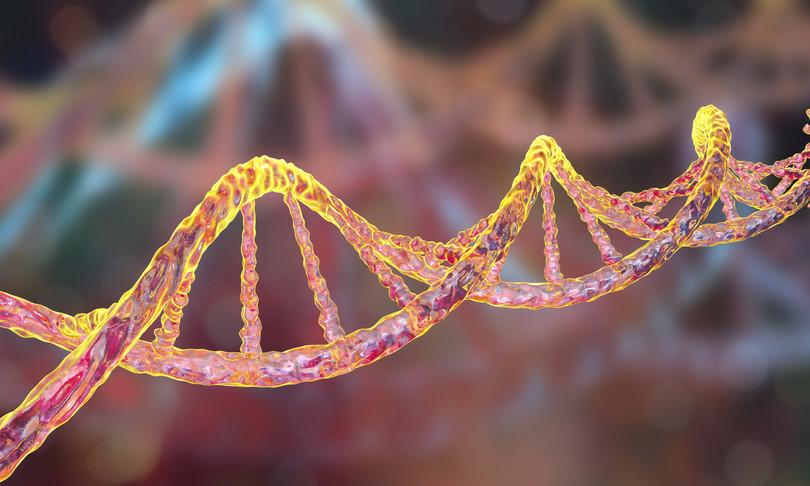 sequenza dna cromosoma x genetica malattie