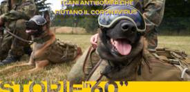 I cani antibomba che fiutano il coronavirus