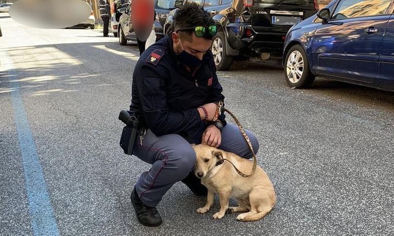 cagnolina salvata adottata poliziotto roma