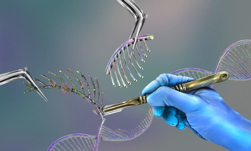 bambini geneticamente modificati sordita