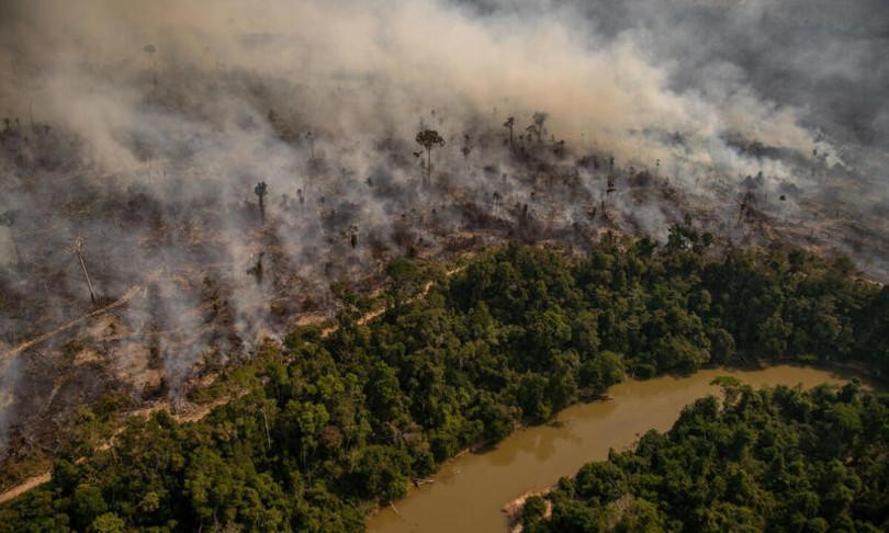 incendi amazzonia foresta diventa savana