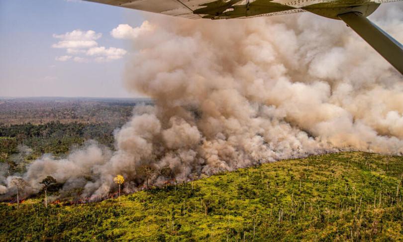 Dal Brasile alla Bolivia il 40% della foresta amazzonica è diventato savana