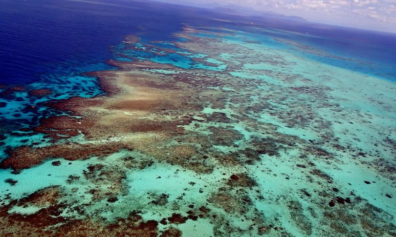 grande barriera corallina perso meta coralli