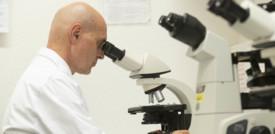 Le persone con la sindrome di Down sono più vulnerabili al corononavirus