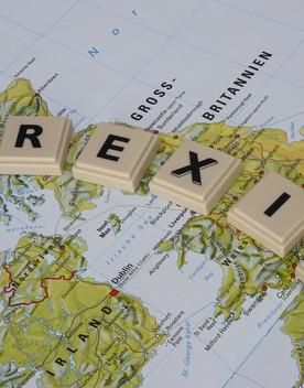 Pesca nella Manica, la Gran Bretagna schiera la Royal Navy
