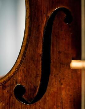 Scoperta la paternità di un prezioso violino grazie a una foto