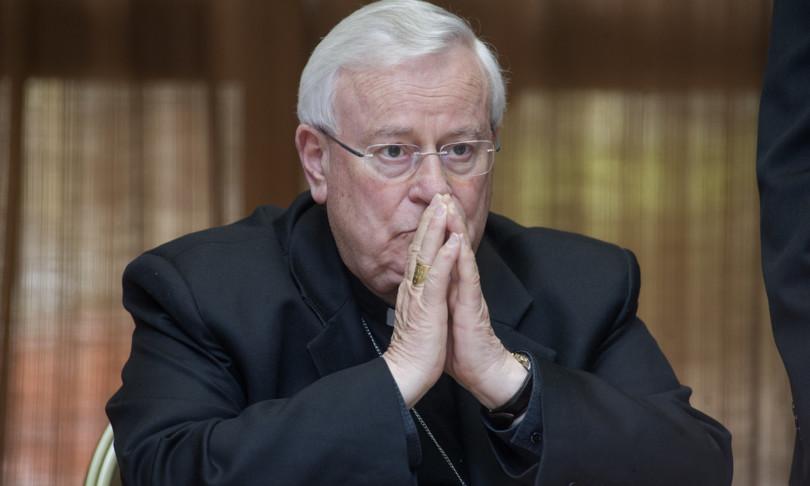chiesa vescovi ceicambiare ddl zanomofobia