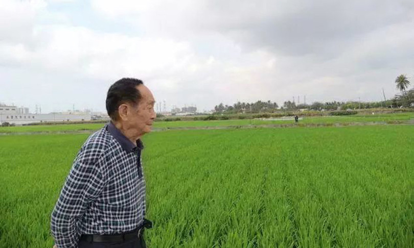 cina morto yuan longping riso ibrido