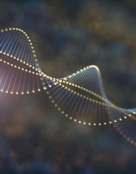 Per la prima volta è stato sequenziatoil genoma umano completo