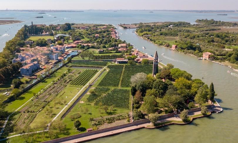 agricoltura eroica vitigno autoctono veneziano