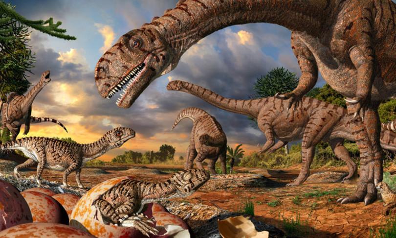 dinosauri vivevano e nidificavano artico