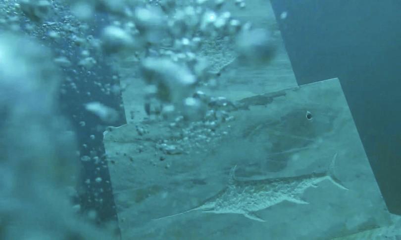 casa dei pesci sostenibilita talamone