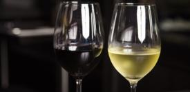 L'assistente vocale che aiuta a scegliere il vino. L'ultima mossa di Alexa
