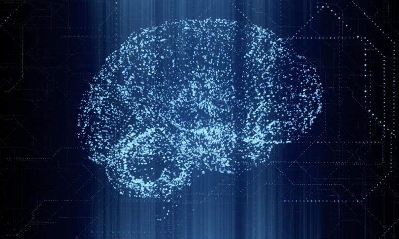 cervello piu giovane trapianto microbiota intestino
