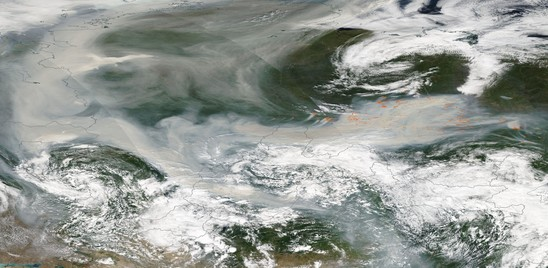 """Arfaras: """"Il rapporto Onu sul clima non valuta gli effetti sull'industria"""""""