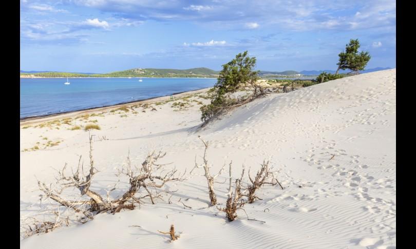 Ladri sabbia ciottoli e conchiglie in Sardegna