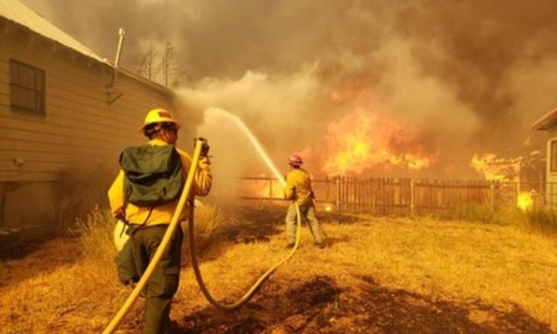 lotta per salvare sequoie giganti incendi california