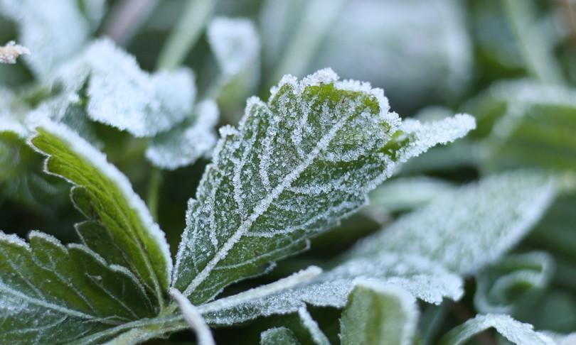 meteo irruzione artica temporali crollo temperature