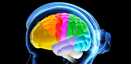 Il cervello umano si è ridotto di dimensioni tremila anni fa