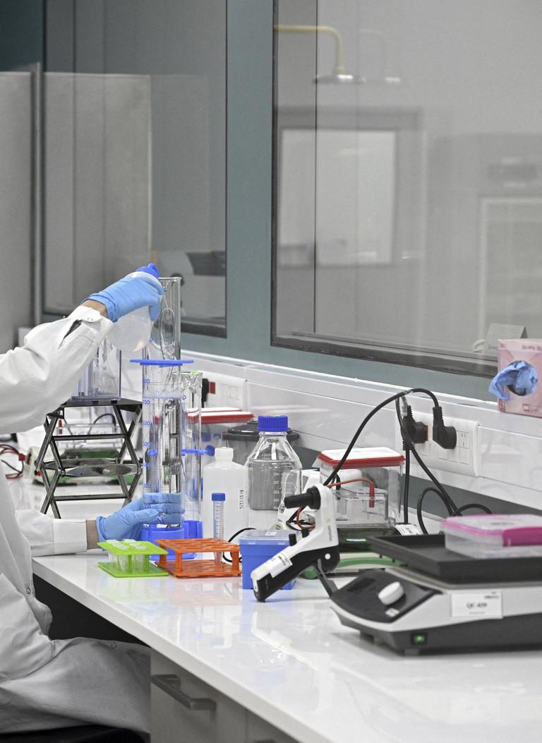 Uno studio prevede l'effetto delle varianti sugli anticorpi monoclonali