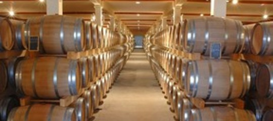 Wine: Padua Consorzio Italia looks to 'conquer' China