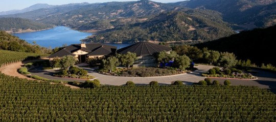 LVMH buys vineyards of excellence in Napa Valley